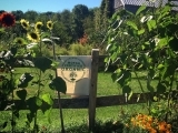 Grow Your Own Organic Garden! An introduction to the basics of organic gardening
