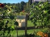 Grow Your Own Organic Garden! An introduction to the basics of organic gardening