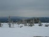 Snowshoeing Hike - White Cap