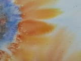 Sunflower in Watercolors for Beginners