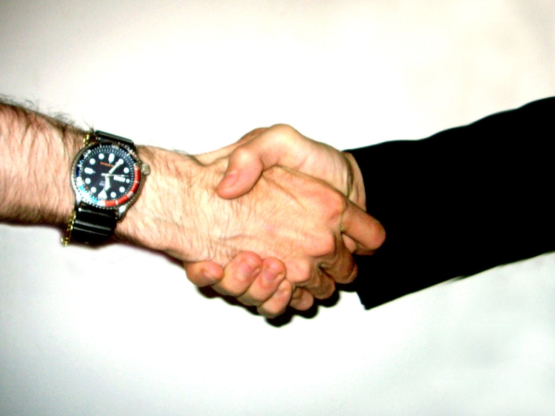 Original source: https://upload.wikimedia.org/wikipedia/commons/thumb/d/d3/Shake_hand.jpg/1280px-Shake_hand.jpg