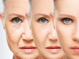 """Keys to """"Anti-Aging"""": Lifestyle and Nutrients to Promote Healthy Longevity"""