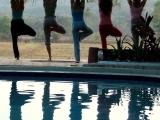 Zoom Haltha Yoga