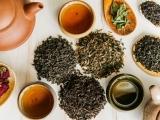 Nourishing Herbs for Women's Health
