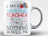 Substitute Teacher Certificate Program