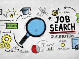 Career Exploration and Job Searching
