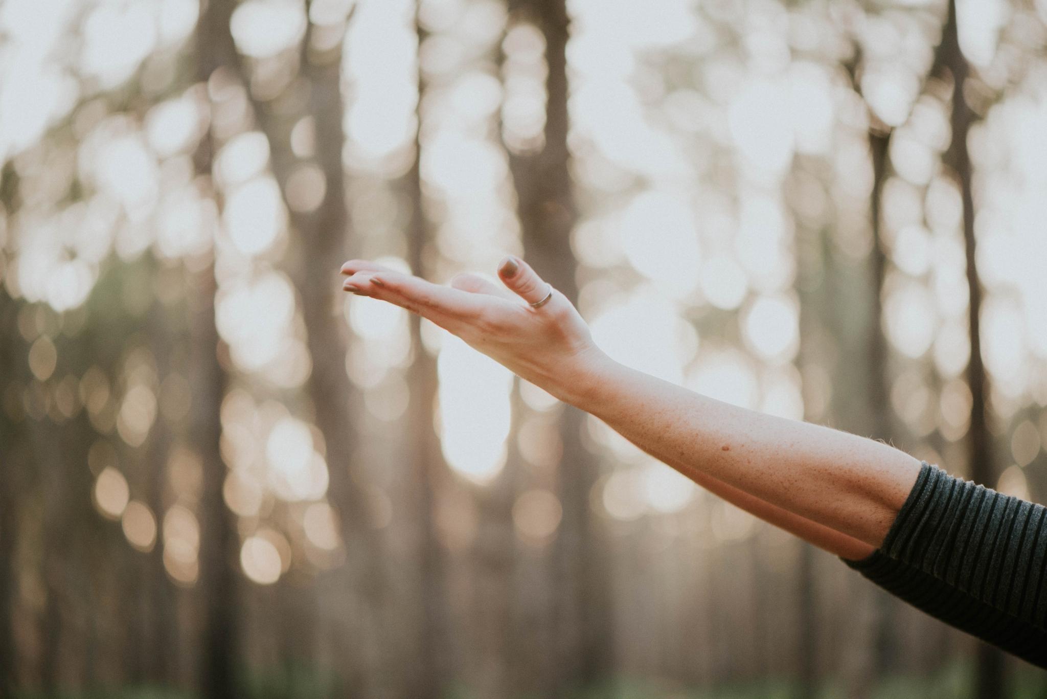 Gentle Yoga and Yoga Nidra with Deb Cook