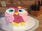 Cake Decorating Basics & Beyond