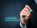 Managing Productivity 8/5