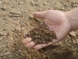 Backyard Conservation Workshops: Water Conservation and Fertilizer Management (free soil tests)