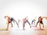 Beginner Vinyasa Flow Yoga