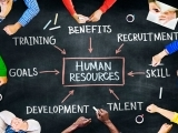 Human Resources Professional