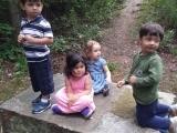 Montessori Toddler II (Full Day)