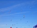 Go Fly a Kite! (Kite Flying 101)