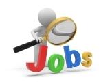 Job Readiness Workshop