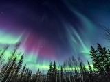 NOLS WFR - RECERT (Fairbanks, AK)