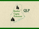QLP ~ Forestry for Maine Birds
