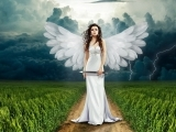 Angels: An Introduction (Online)