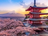 Passport to Japan: Traditions of Japan Art Camp (Mornings OUTDOOR)