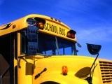 School Bus Class B Stand-Alone Renewal
