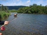 Original source: http://noseeumlodge.com/wp-content/uploads/2016/08/fly-fishing-with-bear.jpg