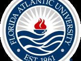 FL E:  Analytical Problem Solving