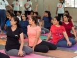 Iyengar Yoga: Session 2
