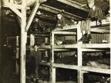 History Of The Holocaust-Orono