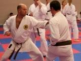 Original source: http://www.valekarate.com/KARATE_FOR_ADULTS/karate_for_adults_001.jpg