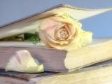 Book Club - Spring
