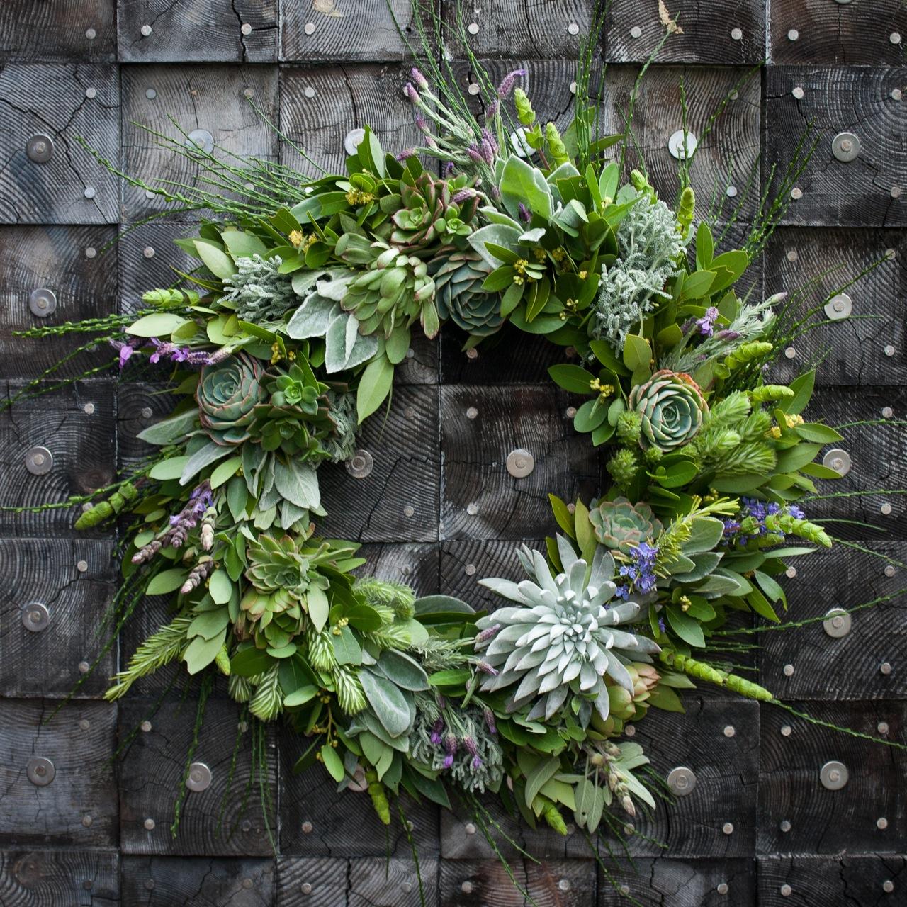 Create a Succulent Wreath