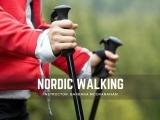 Nordic Walking: Session II