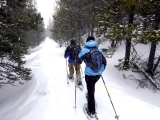 Original source: http://www.steamboat-vacations.com/media/images/winteractivities/snowshoe7.jpg