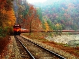 Hobo Turkey Train