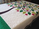 Quilting and  Appliqué