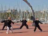 TAI CHI EASY FIVE FORMS SERIES '20