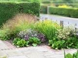 Designing the Garden & Jump Starting Spring