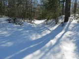 Snowshoeing Hike - Overset Pond