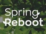 Spring Health Reset