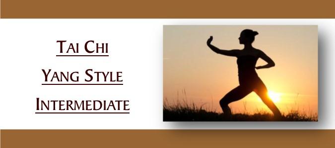 Tai Chi Yang Style Intermediate