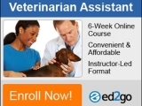 Become a Veterinary Assistant