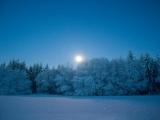 Moonlight Snowshoe Hike