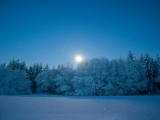Moonlight Snowshoe Hike