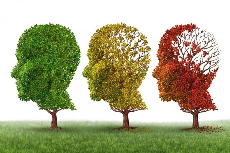 Original source: http://qrpharma.com/wp-content/uploads/2016/04/Alzheimer-66ev0n5vzxoph9rfxozycvsxvnoidks7m7r759ugul6.jpg