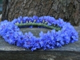 Floral Wreaths (in person) Pomperaug HS
