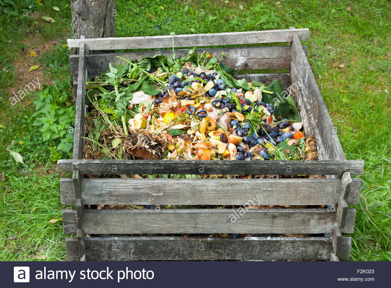 GAR 03 - Workshop: Probiotic Composting and Sustainability in the Urban Home