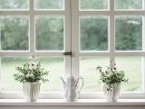 Replacement Window Workshop (Online)
