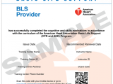 Basic Life Support (BLS) Recertification