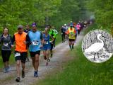 Snowy Egret 5K Run/Walk