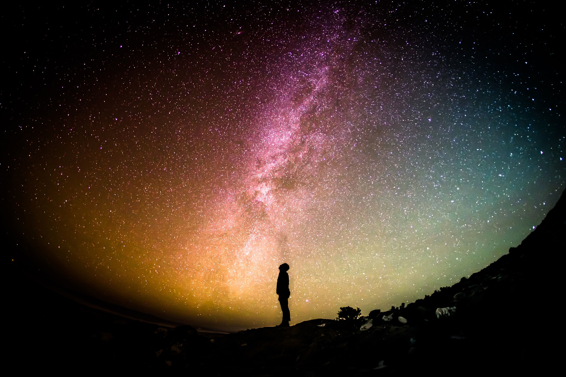 Stellar Academy